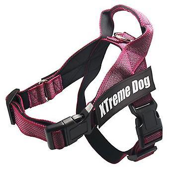 Arquivet Arnés Xtreme klassinen koira (koirat, kaula pannat, liidit ja valjaat, valjaat)