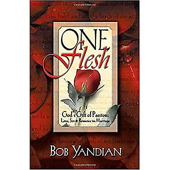 One Flesh: God's Gift to Passion: Love, Sex and Romance in Marriage