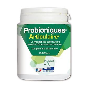 ARTICULAR PROBIONICS 120 capsules