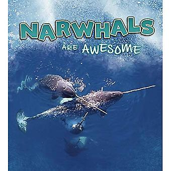 Narwhals Are Awesome (A+ Books: Polar Animals)
