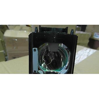 Compatibele projectorlamp