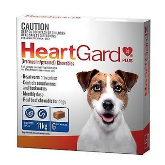 HEARTGARD Plus mâcher Pack 6 bleu