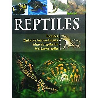 Reptiles (Pegasus Encyclopedia Library)