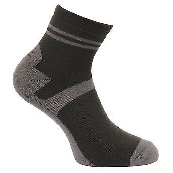 Regatta buitenleven Mens actieve levensstijl Walking sokken (pak van 3)