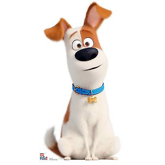 Max from The Secret Life Of Pets 2  Cardboard Cutout / Standup