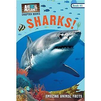 Animal Planet Chapter Books - Sharks! by Animal Planet - Lori Stein -