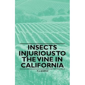 Insects Injurious to the Vine in California by Quayle & H. J.