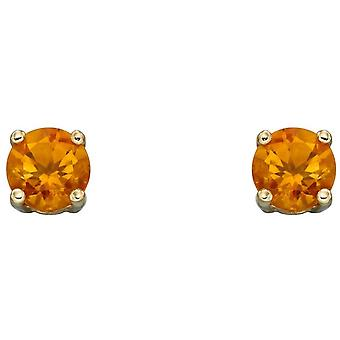 Elemente Gold November Birthstone Ohrstecker - Orange/Gold