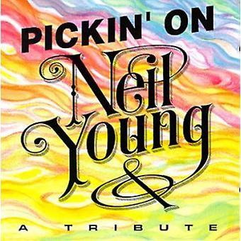 Pickin' on Neil Young - Pickin' on Neil Young [CD] USA import