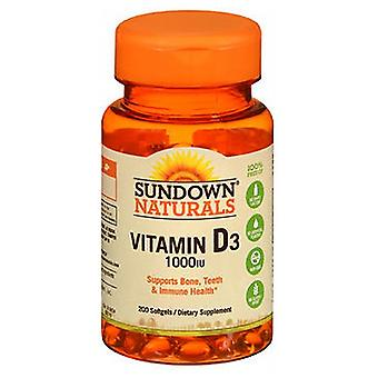 Sundown Naturals High Potency Vitamin D3, 1000 IU, 100 caps