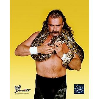 Jake The Snake Roberts - #352 Sports Photo (8 x 10)