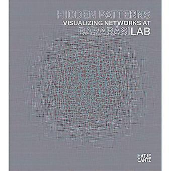 Padrões Ocultos: Visualizando redes no BarabasiLab