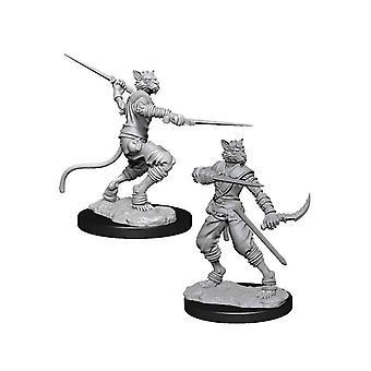 D&D Nolzurin upeat tahraamattomat miniatyyrit (W7) Mies Tabaxi Rogue
