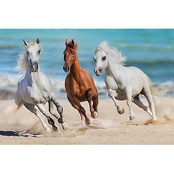 Tapete Mural Horse Herd Run Gallop