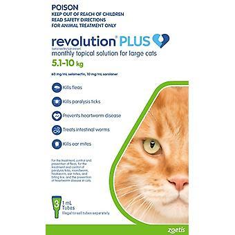 Revolution Plus kissa suuri kissa 3pk 5-10kg