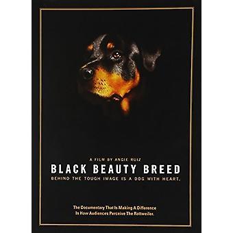 Black Beauty Breed [DVD] USA import