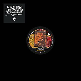 Pictish Trail – Vem kommer in? vinyl