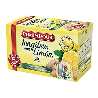 Infusion Pompadour Ingwer Zitrone (20 uds)