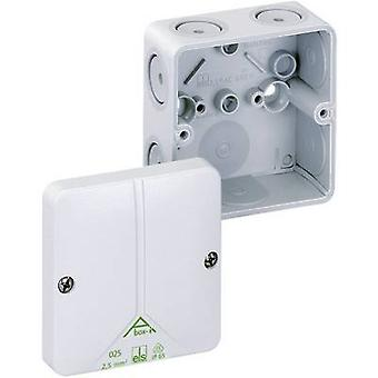 ה49090601 בקופסא המשותפת (L x W x H) 110 x 110 x 67 mm אפור IP65
