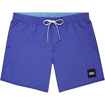 O'Neill snabb torr Volley Shorts ~ Vert blå