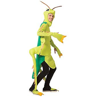 Grasshopper Adult Costume