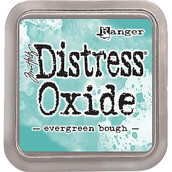 Tim Holtz Distress Oxider Blæk Pad - Evergreen Bough