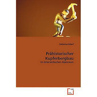 Prhistorischer Kupferbergbau by Scharf & Catharina