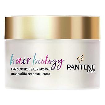 Hair Mask Hair Biology Frizz & Luminosidad Pantene (160 ml)
