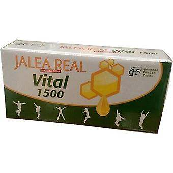 GHF Jalea Real Vital 1500 Adultos 10 ml 30 Ampollas