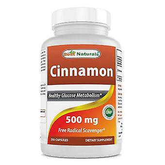 Best Naturals Cinnamon Bark, 500 mg, 250 Caps