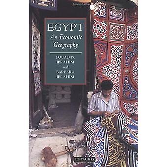 Egitto: Una geografia economica