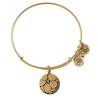 Alex and Ani Granddaughter Gold Bangle A13EB07RG