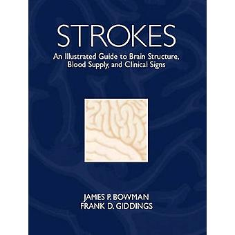 Strokes  An Illustrated Guide to Brain Structure Blood Supply and Clinical Signs by James P Bowman & Frank D Giddings