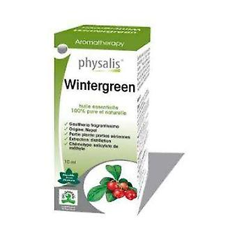 Wintergreen Essence Wintergreen Bio 10 ml