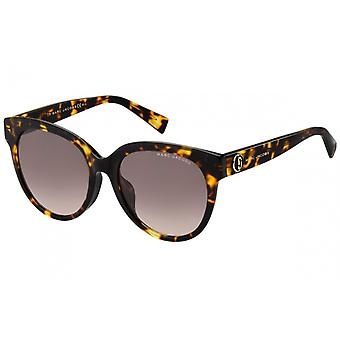 Sunglasses Women's Wanderer/All Round Dark Havana
