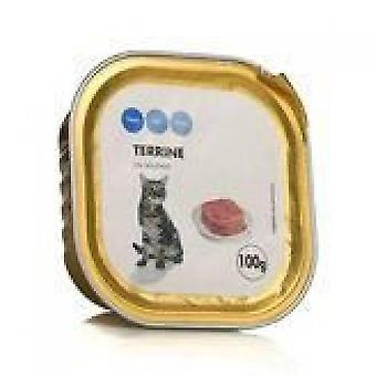 Every Day - Salmon Tray - For Cats - 100g
