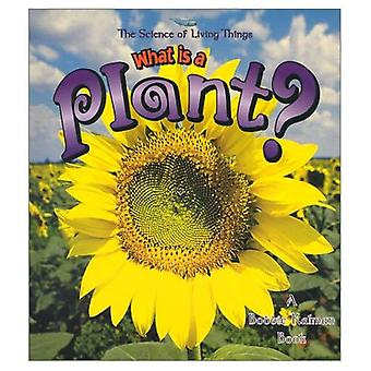 What is a Plant? (Science of Living Things)