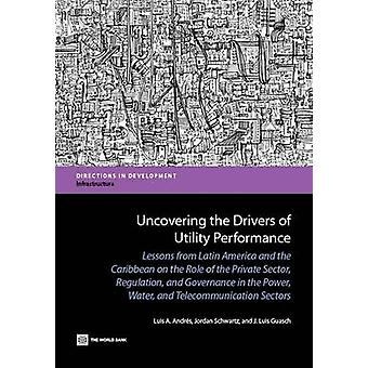 Uncovering the Drivers of Utility Performance - The Role of the Privat