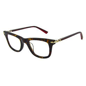 Ducati DA1008 403 Tortoise Glasses
