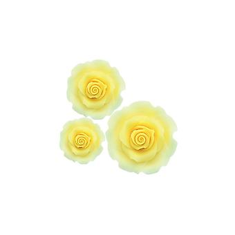 SugarSoft Ombre Yellow Sugar Soft Roses - Pack mixte de 38mm, 50mm, 63mm - Boxed 12