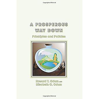 A Prosperous Way Down - Principles and Policies by Howard T. Odum - 97