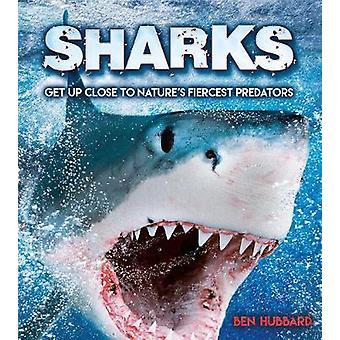 Sharks - Get Up Close to Nature's Fiercest Predators by Ben Hubbard -
