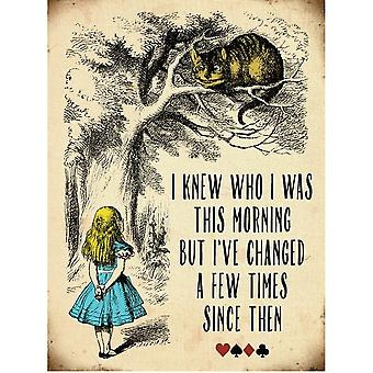 Alice In Wonderland Vintage Metal Cheshire Cat Wall Sign