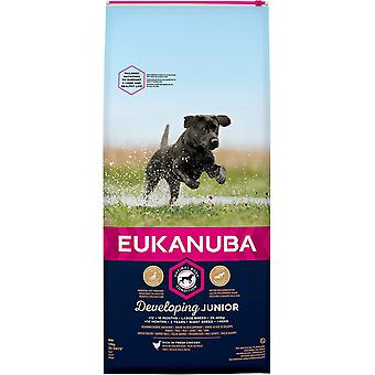 Eukanuba Ontwikkeling Junior Large Breed Chicken - 12kg