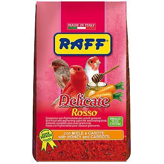 Raff Delicate Rosso (Birds , Hand Rearing)