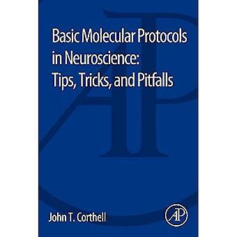 Basic Molecular Protocols in Neuroscience: Tips, Tricks, and Pitfalls