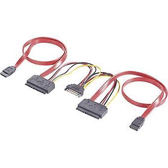 Renkforce Hard drives Y cable [2x SATA socket 7-pin, SATA power plug - 2x SATA socket 2-pin] 0.50 m Red