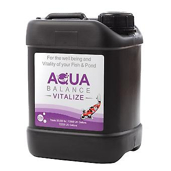 Aqua Source Aqua Balance Vitalize 2.5Ltr