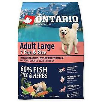 Ontario Adult Fish & Rice Large Breed (Dogs , Dog Food , Dry Food)