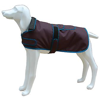 Freedog Jacket North Pole Model D Gray (Dogs , Dog Clothes , Coats and capes)